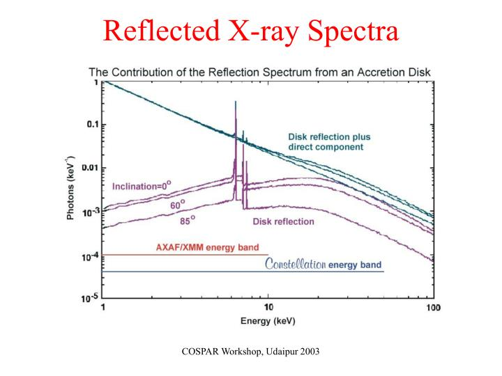 Reflected X-ray Spectra