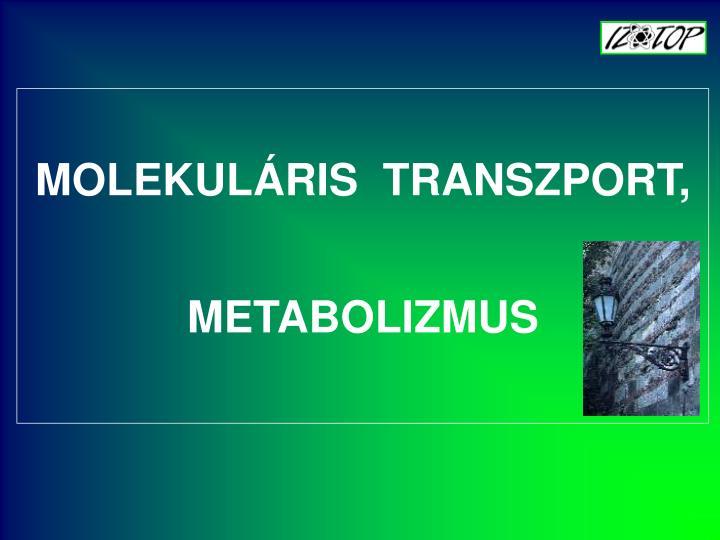 MOLEKULÁRIS  TRANSZPORT, METABOLIZMUS