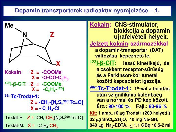 Dopamin transzporterek radioaktív nyomjelzése – 1.