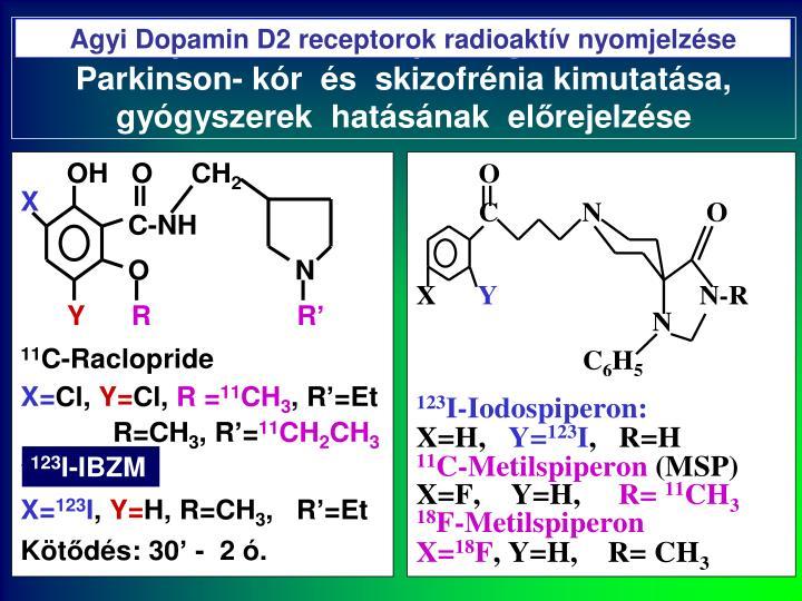Agyi Dopamin D2 receptorok radioaktív nyomjelzése