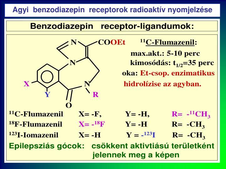 Agyi  benzodiazepin  receptorok radioaktív nyomjelzése