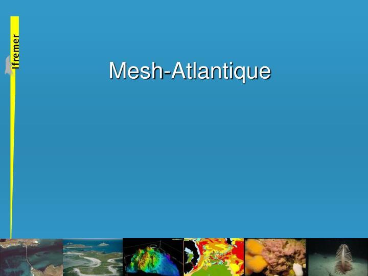 mesh atlantique n.