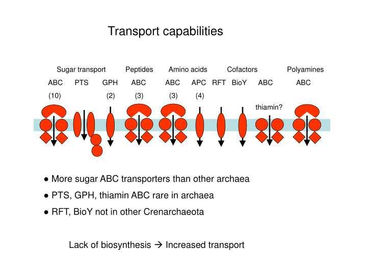 Transport capabilities