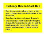 exchange rate in short run