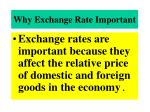 why exchange rate important