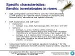 specific characteristics benthic invertebrates in rivers