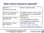 what metrics should be reported