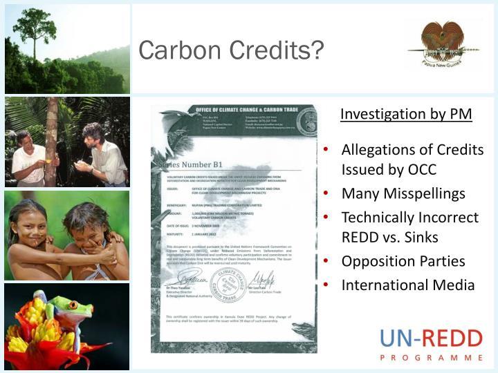 Carbon Credits?