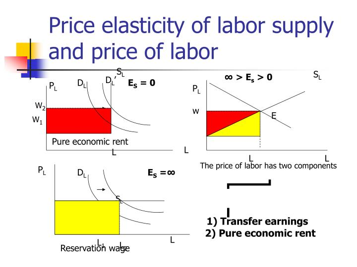 Price elasticity of labor supply and price of labor