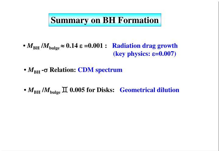 Summary on BH Formation