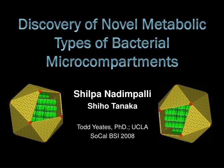 Shilpa nadimpalli shiho tanaka todd yeates phd ucla socal bsi 2008