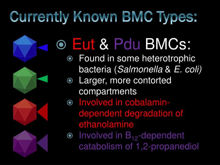 Currently Known BMC Types: