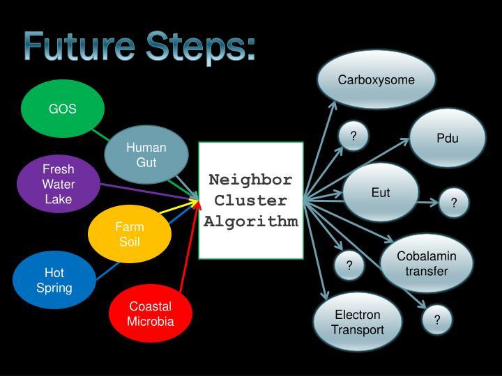 Future Steps: