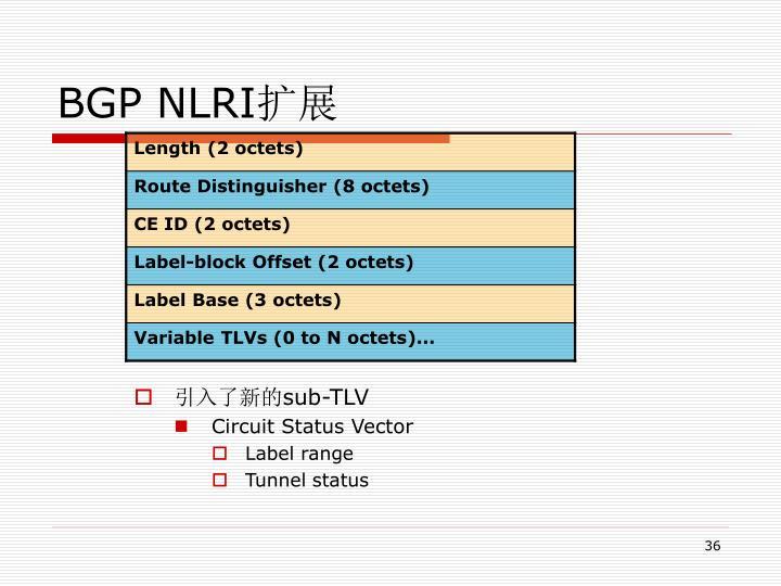 BGP NLRI