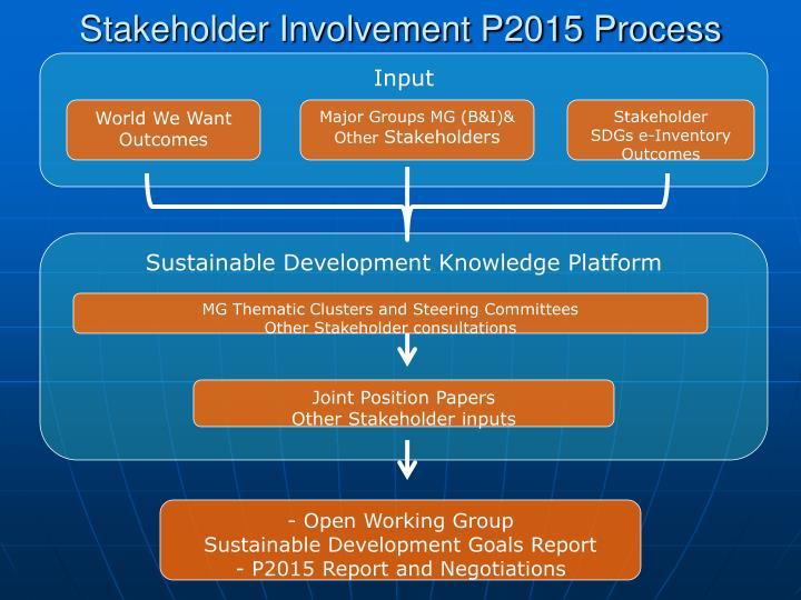 Stakeholder Involvement P2015 Process