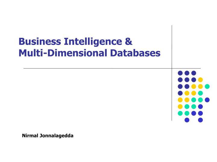 business intelligence multi dimensional databases n.