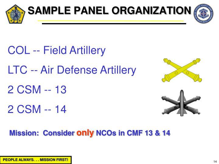 SAMPLE PANEL ORGANIZATION
