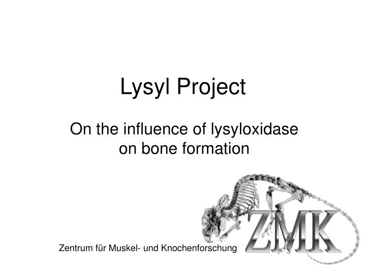 lysyl project n.