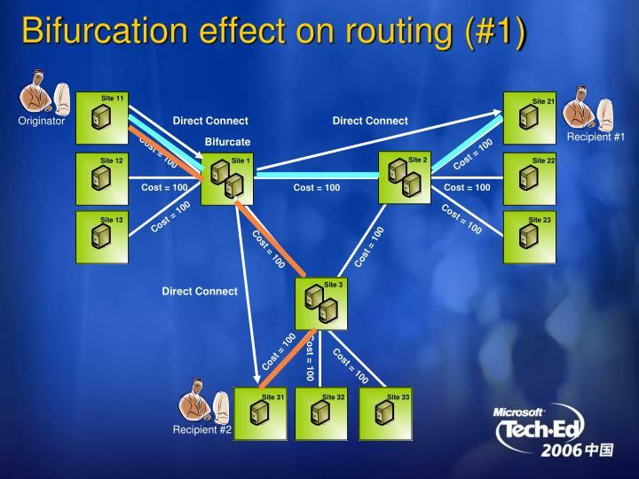 Bifurcation effect on routing (#1)