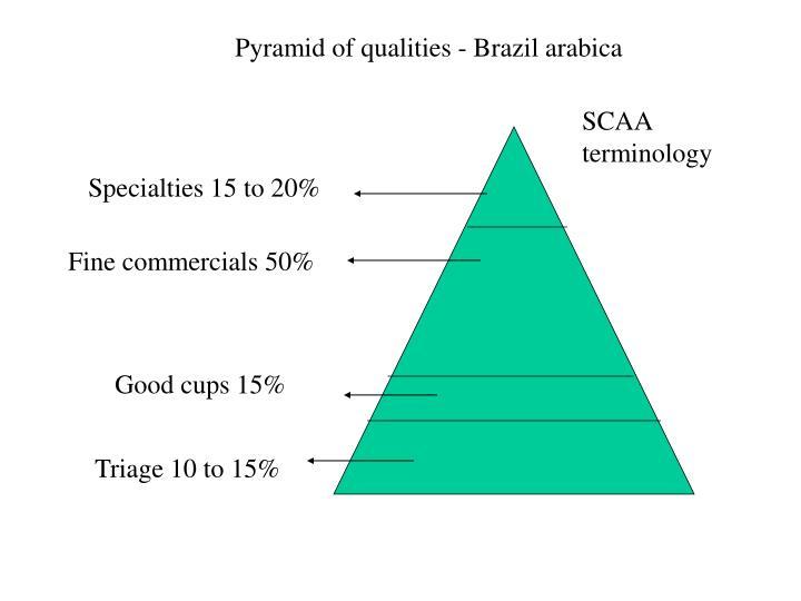 Pyramid of qualities - Brazil arabica