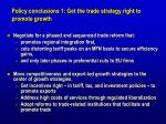 policy conclusions 1 get the trade strategy right to promote growth