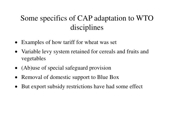 Some specifics of CAP adaptation to WTO disciplines