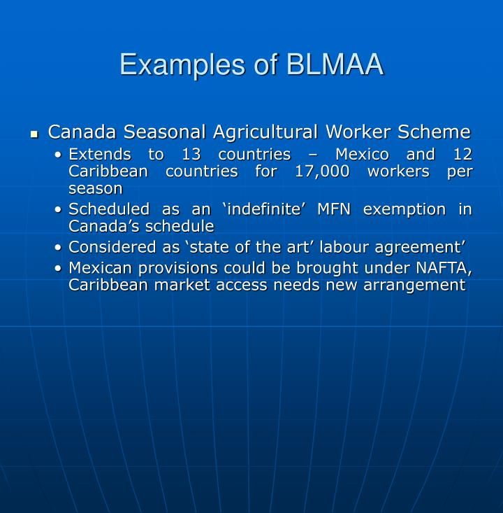 Examples of BLMAA