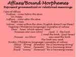 affixes bound morphemes represent grammatical or relational meanings