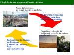 principio de la compensaci n del carbono
