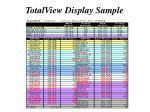 totalview display sample