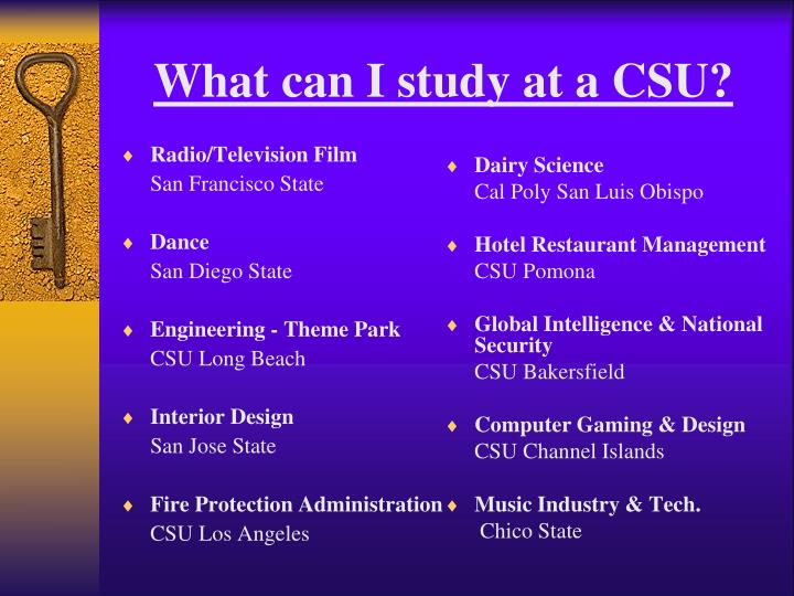 What can I study at a CSU?