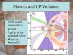 flavour and cp violation