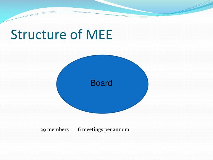 Structure of MEE