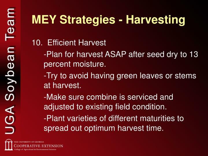 MEY Strategies - Harvesting