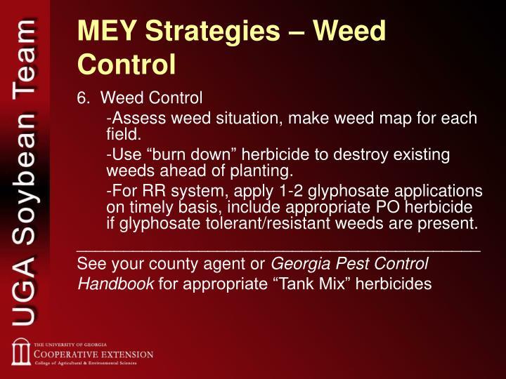 MEY Strategies – Weed Control