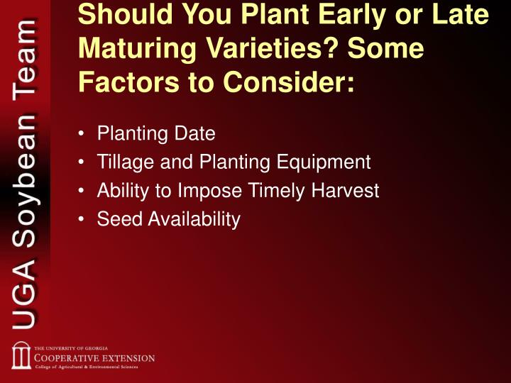 Should You Plant Early or Late Maturing Varieties? Some Factors to Consider: