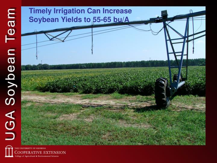 Timely Irrigation Can Increase Soybean Yields to 55-65 bu/A