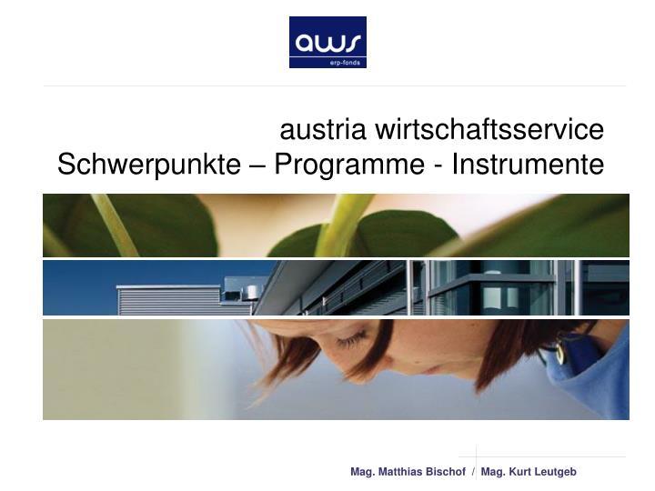 austria wirtschaftsservice schwerpunkte programme instrumente n.