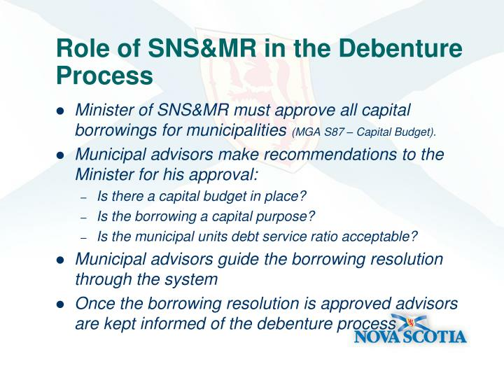 Role of SNS&MR in the Debenture Process