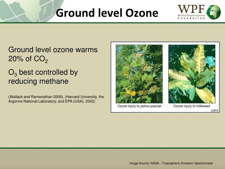 Ground level Ozone