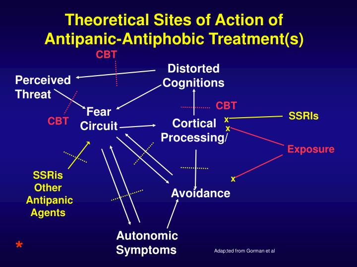 Theoretical Sites of Action of Antipanic-Antiphobic Treatment(s)