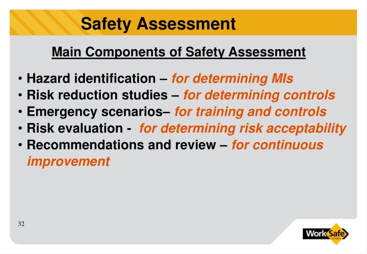 Safety Assessment