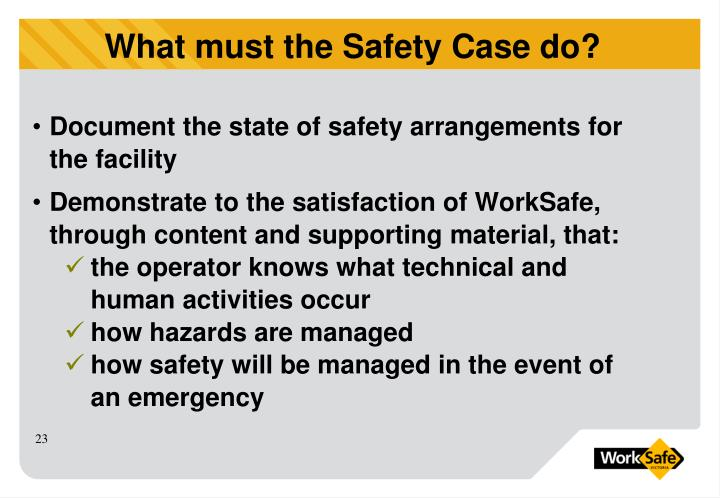 Document the state of safety arrangements for the facility