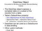 dataview object convenient for binding and display records meeting criteria