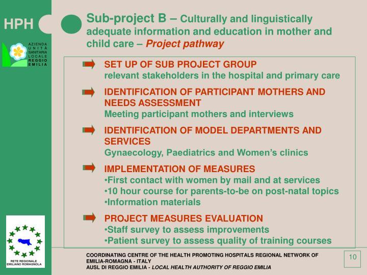 Sub-project B –