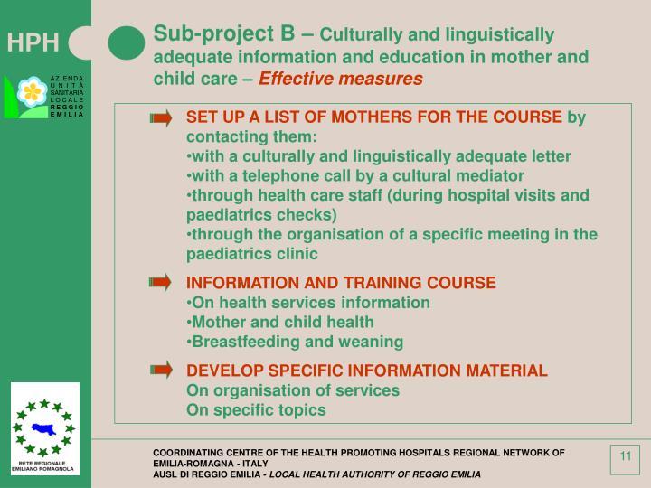 Sub-project B