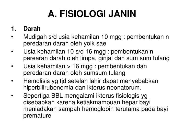 A fisiologi janin