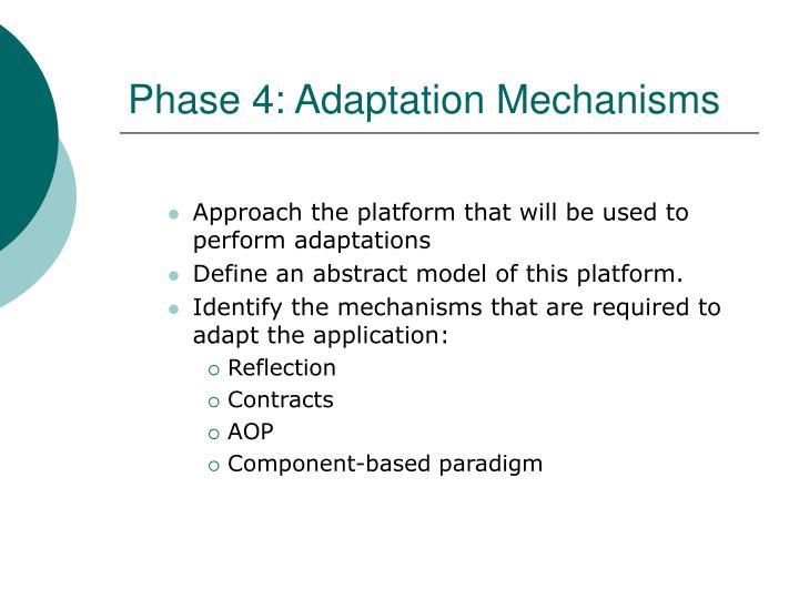 Phase 4: Adaptation Mechanisms