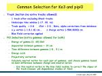 common selection for ke3 and pipi0