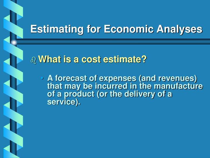 Estimating for Economic Analyses